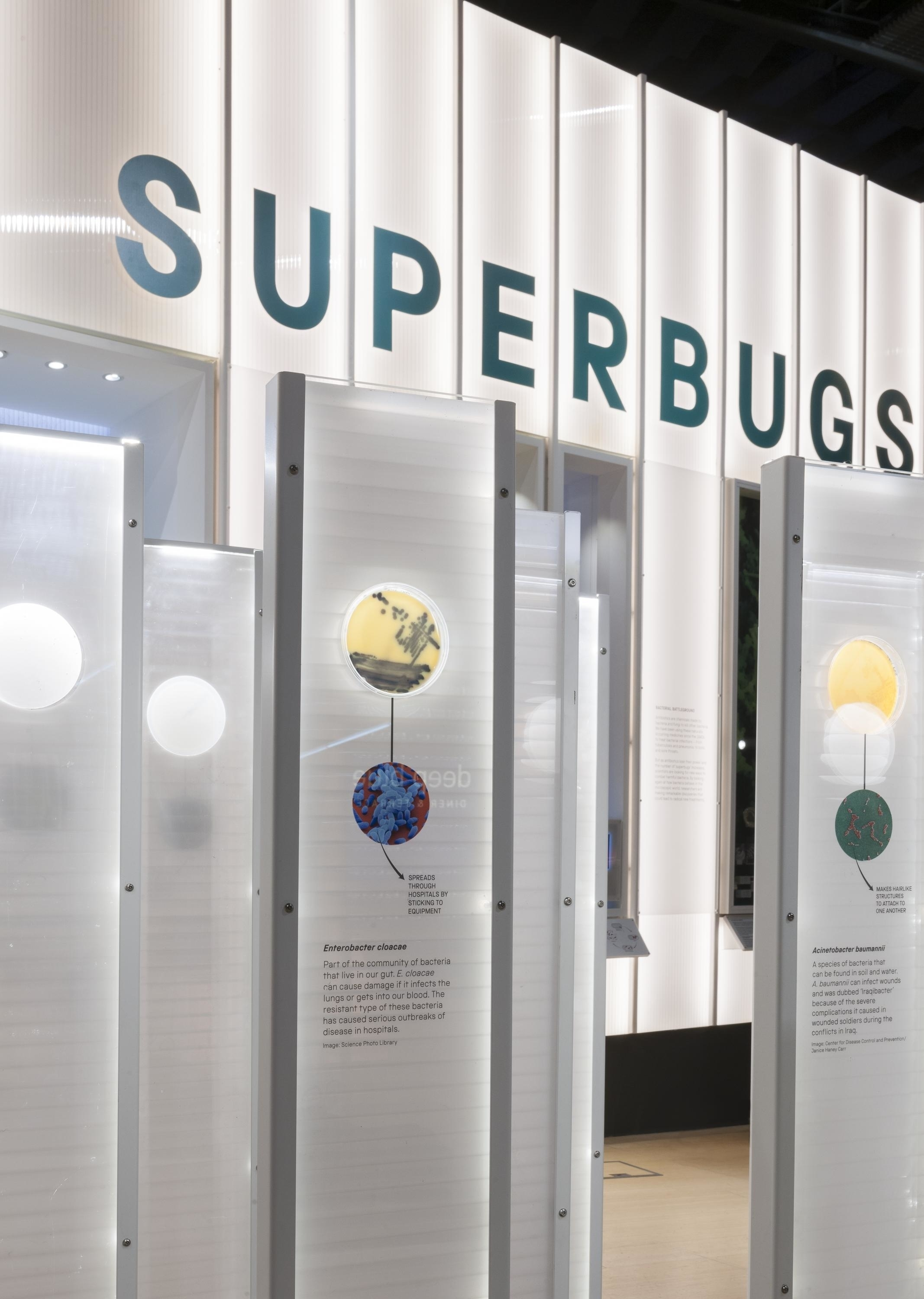superbugs science museum
